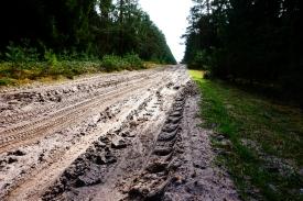 sandy roads to Lüneburg